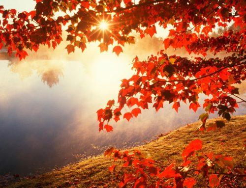 Podzimní fotokoutek